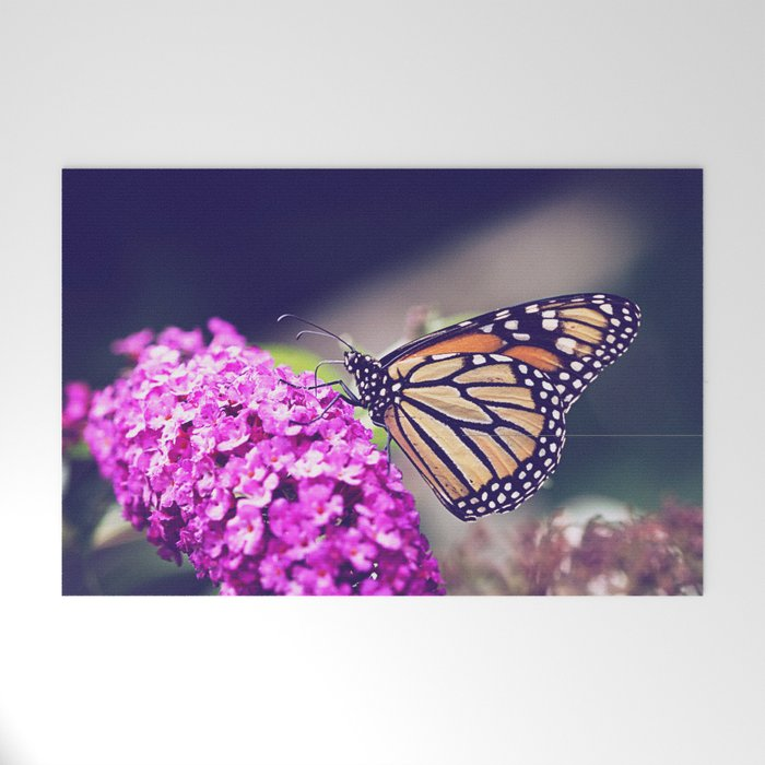 Butterfly Dreams Welcome Mat