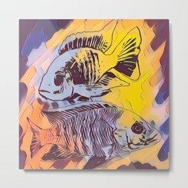 Cichlid Fall Colors Aquarium Fish Tank Owners Gift Metal Print