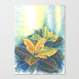 Сolorful Leaves Canvas Print