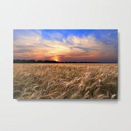Sunset Harvest Metal Print