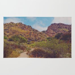 Red Rock Canyon Rug