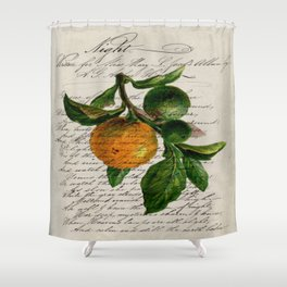 Shabby French botanical print tangerine clementine mandarin orange Shower Curtain