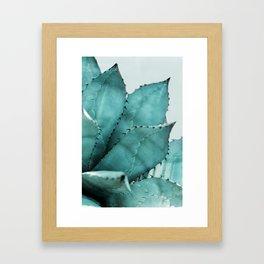 Cactus 5 Framed Art Print