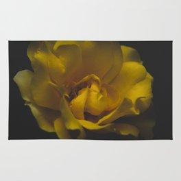 Yellow rose Rug