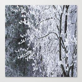 Snowy Tree Branches Winter Scene #decor #society6 #buyart Canvas Print