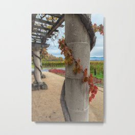 Column with Grapevine Metal Print
