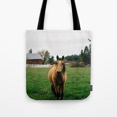 Horse // Oregon Tote Bag