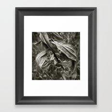 'Bleak' Framed Art Print