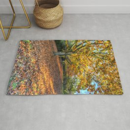 An English Autumn Rug