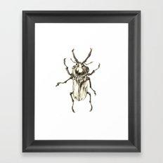 Beetle2 Framed Art Print