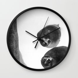 Sea lions in conversation Wall Clock