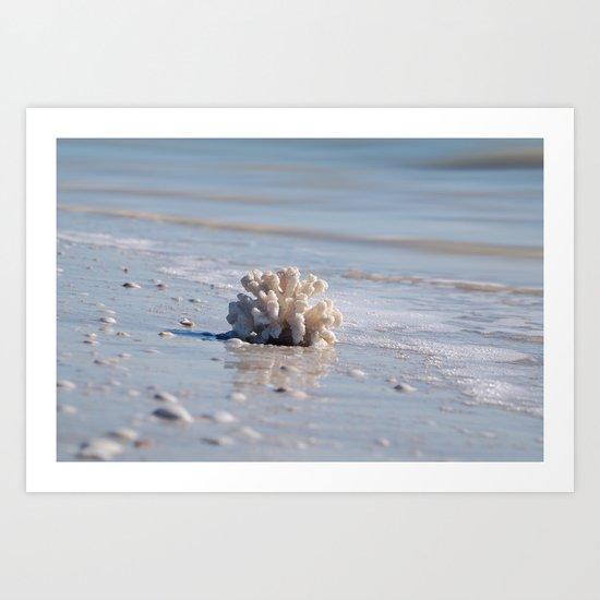 Coral Beach Art Print
