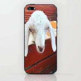 Baby Goat iPhone Skin