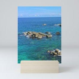 Rocas Mini Art Print