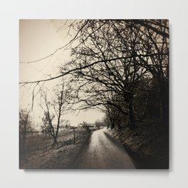 Show me the way to go home Metal Print