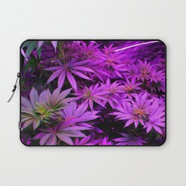 Colorado Marijuana LED Grow Lights Laptop Sleeve