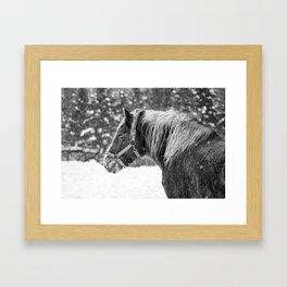I am looking at you Framed Art Print