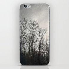 Sun Burnt iPhone & iPod Skin