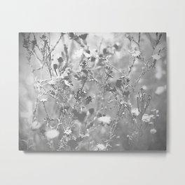 Bristles and Flowers Metal Print