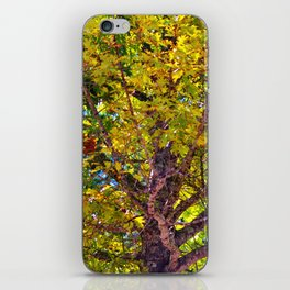 Spectacular View iPhone Skin