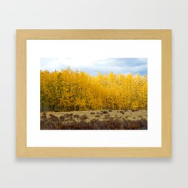 Kenosha Pass Study 7 Framed Art Print