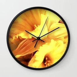 Daffodils In Spring Wall Clock