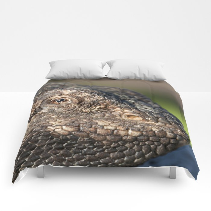 Bearded Dragon watching you Comforters