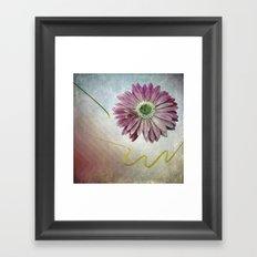 violet daisy with ribbon Framed Art Print