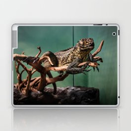 Languid Lizard Laptop & iPad Skin