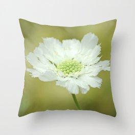 White Scabiosa Throw Pillow