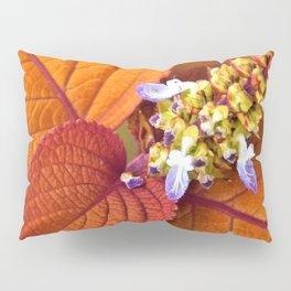 Autumn Hosta Pillow Sham