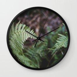 Ferns intertwine Wall Clock