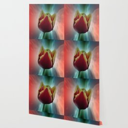 tulips in spring -7- Wallpaper