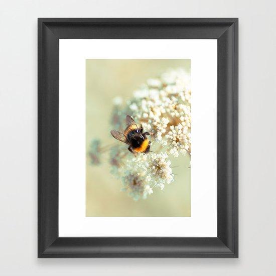 Bumblebee. Framed Art Print
