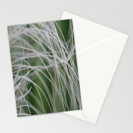 Rainforest Palm Tree Leaf Close Up  Stationery Cards