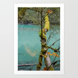 Medium Blue Art Print