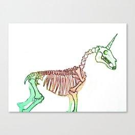 A Study in Rainbow Canvas Print
