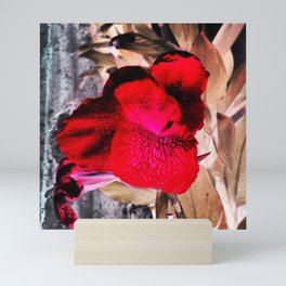 Scarlet Red Flower. Abstract Floral Photography. Mini Art Print