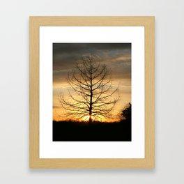 Dawns Morning Light Framed Art Print