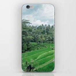Ricefield in Ubud, Bali iPhone Skin