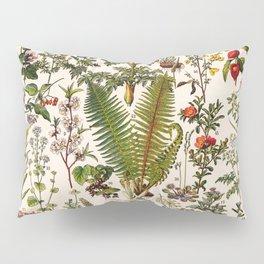 Adolphe Millot - Plantes Medicinales B - French vintage poster Pillow Sham