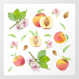 Peach fruit watercolor - Hand drawn ripe fruits Art Print
