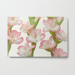 Gladioli Flowers Metal Print