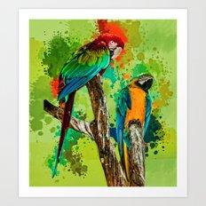 Paint Splashed Macaws Art Print