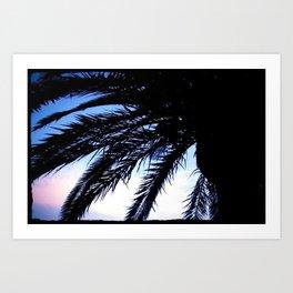 Palm Bay Art Print