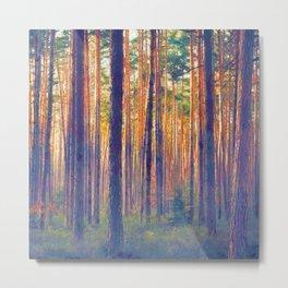 Forest - Filtering light Metal Print