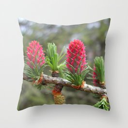 Striking bright pink larch flowers Throw Pillow