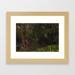 mystic willow Framed Art Print
