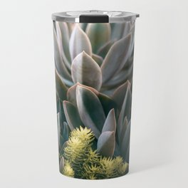 Graptoveria Study #3 Travel Mug