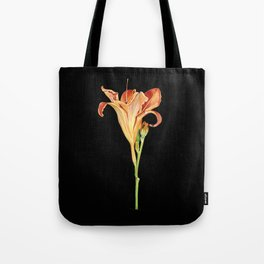 Orange Daylily Illustration Tote Bag